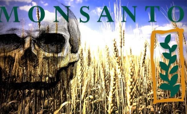 Monsanto brevetta la sterilità dei propri semi
